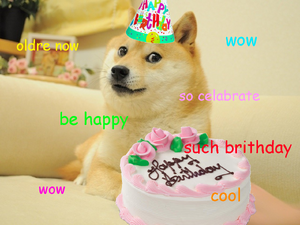 Doge B-day