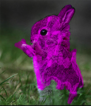 Bunny of Death