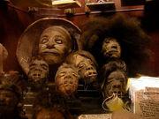 Shrunken-heads 2