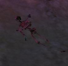 Skeleton16