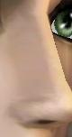 Cur nose