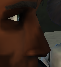 Hermit nose
