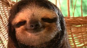 Slothmallace