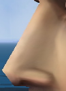 Nose10