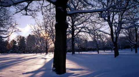 Antonio Vivaldi.Four seasons.Winter.