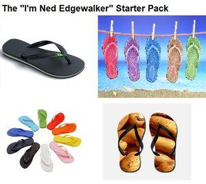 Ned starter pack