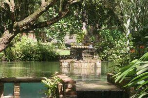 Fountain of yourh jaun