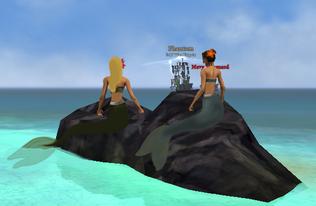 Raven's Cove Mermaids