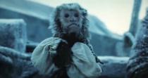 Jack-the-monkey-67652