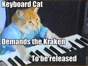 Keyboard Cat Kraken