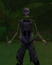 Wanted Skeleton