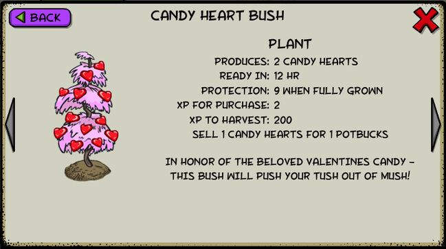 Candy heart bush