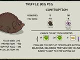 Truffle Big Pig