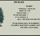 420 Blues