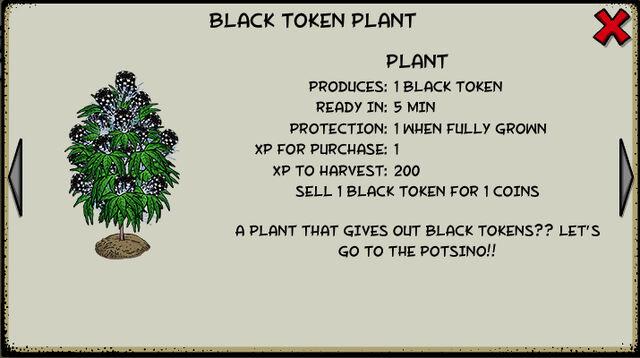 File:Black token plant.jpeg