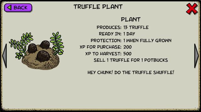 File:Truffle plant.jpeg