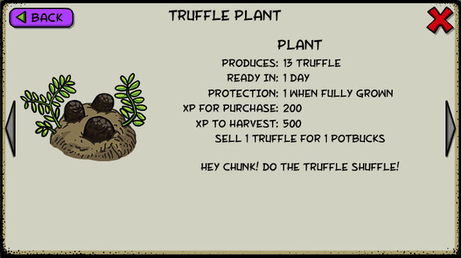 Truffle plant