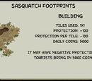 Sasquatch Footprints