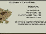 Sasquatch Footprints