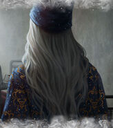 Dumbledore B6C13M1 background