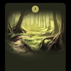 The twisting, leaf-strewn path through woods