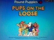 Pups on the Loose title screen
