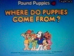 Where Do Puppies Come From? title screen
