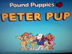 Peter Pup
