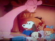 Bob and the Pound Puppies