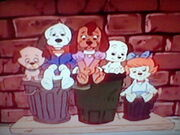 Pal and the Pound Puppies
