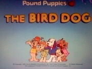 Title Screen for The Bird Dog