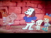 Bessie and the Pound Puppies