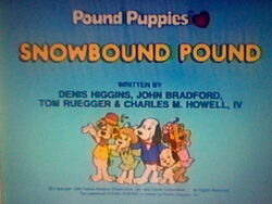 Title screen for Snowbound Pound
