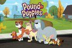 Pound-Puppies-Series-Photo