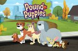 Pound-Puppies-Series-Photo