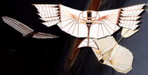 Lilienthalgleiter modelle