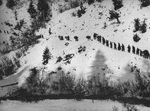 Partizani kod Prijepolja 1943