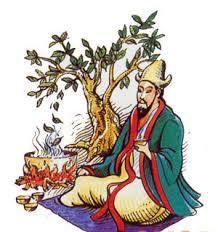 Čaj-kina