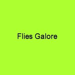 Flies galore title card