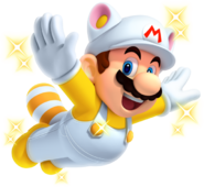 Invincibility Raccoon Mario New Super Mario Bros. 2