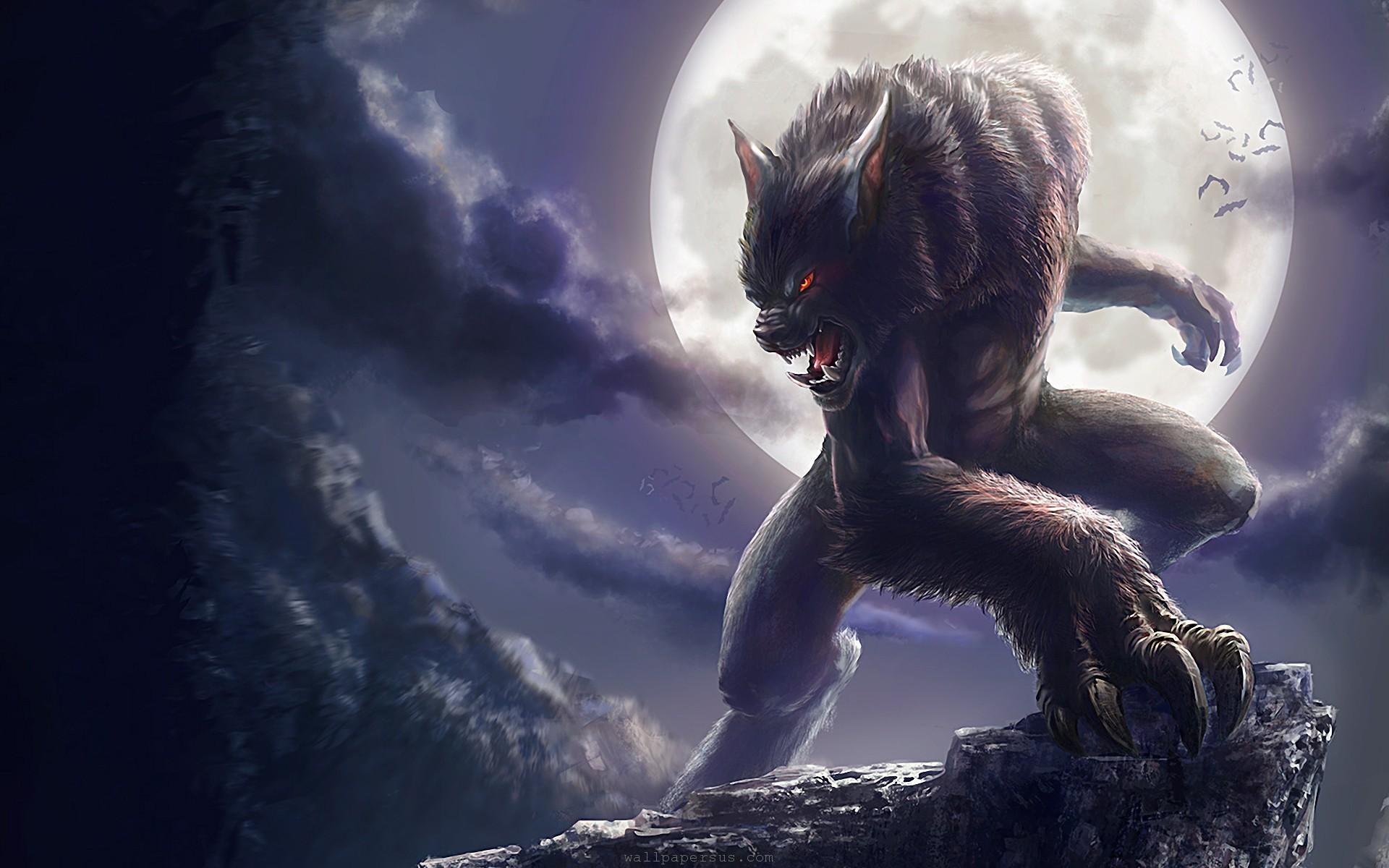 Werewolf Physiology Superpower Wiki Fandom Powered By Wikia