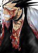 Zaraki Kenpachi Cut Up