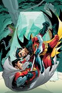 Robin Cover 168 Solicit