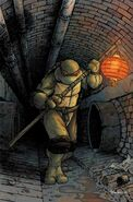 Donatello (IDW Teenage Mutant Ninja Turtles) profile