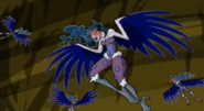 Storm Harpy