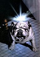 Lockjaw Inhumans Vol 2 8 Textless