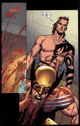 Daken I'm better than you