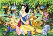 Snow-white&animals