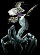 Queen Arachne