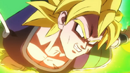 Super Saiyan Broly C-Type